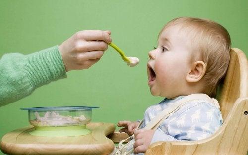 생후 8개월 아기를 대하는 방법 이유식