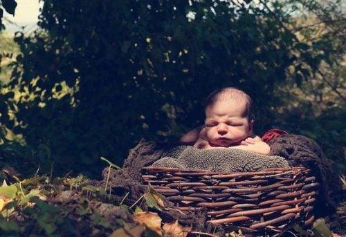 가장 인기 있는 아기 이름 라틴 어원
