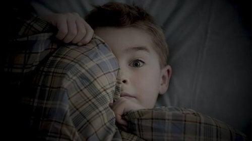 6세 아이들이 갖는 두려움