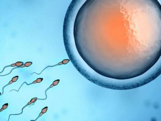 임신에 관한 5가지 미신