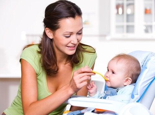아기의 생후 1년 동안의 적절한 영양