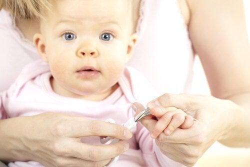 아기 손톱 자르기 감염