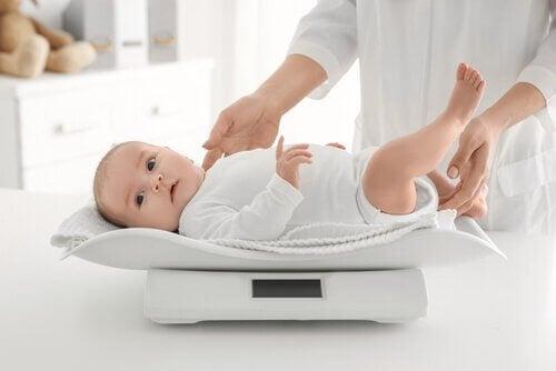 매달 체중이 늘어나는 아기
