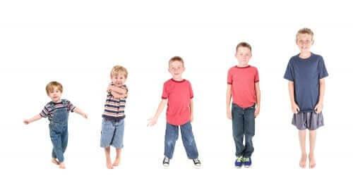 아이들의 다양한 성숙도 발달 단계