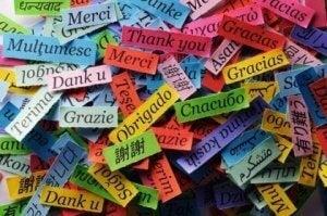 언어 학습에 2