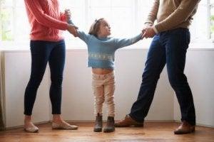 이혼한 부모를 위한 양육권 조정의 유형