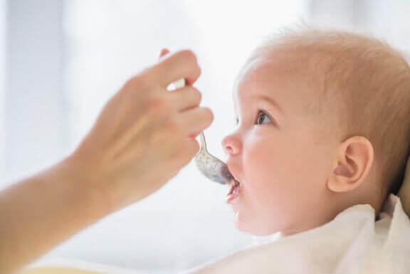아기 음식을 보관하는 것이 좋은 생각일까?
