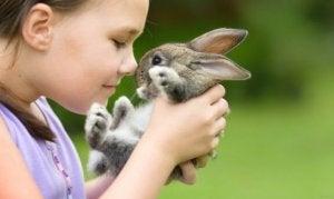 4. 토끼