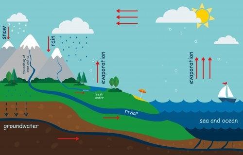 물의 순환을 아이에게 설명하는 방법
