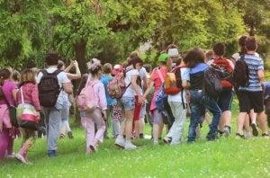 학교 여행 중 사고 관련 부모의 청구에 관한 두 가지 알려진 사례