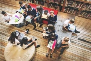 학교 조직 이론 및 특징
