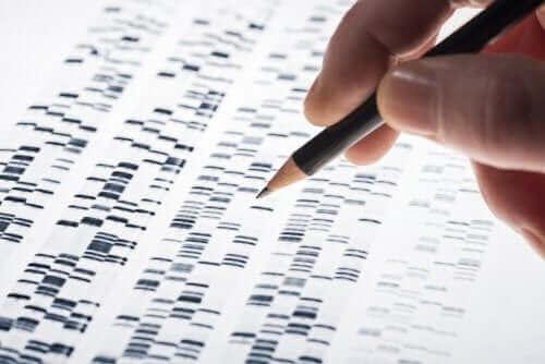 태아 유전자 검사란 무엇일까?