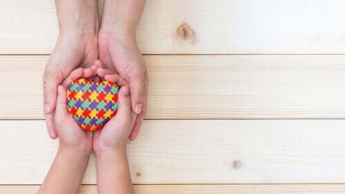 자폐 아동의 교육: 설정 유형