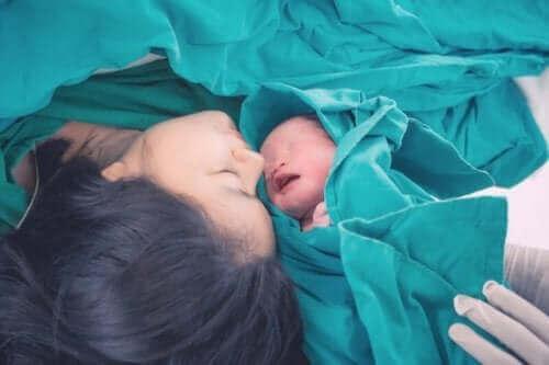 출산에 관한 법적 권리