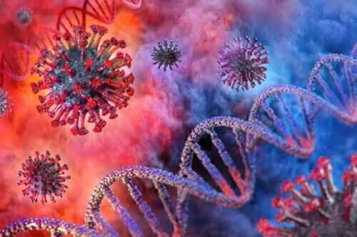 휴교가 코로나바이러스 확산을 늦출 수 있을까?