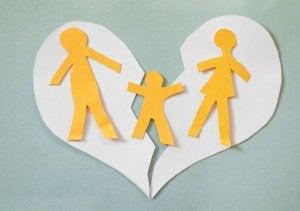 가족 소송 절차를 위한 임시 조처로서의 가족 자산의 분할