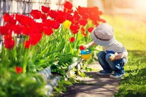 정원 가꾸기에 관한 어린이 동화 6선
