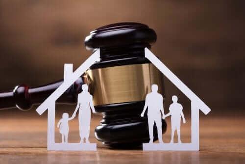 가족 소송 절차를 위한 임시 조처