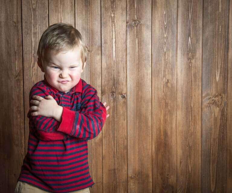 유아 사춘기 분노