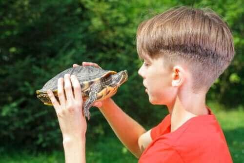 거북이 기법이 자존감에 미치는 영향