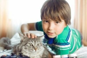 고양이가 주인공인 아동 도서 4권