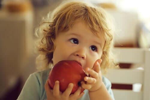 아기에게 BLW를 적용하는 방법