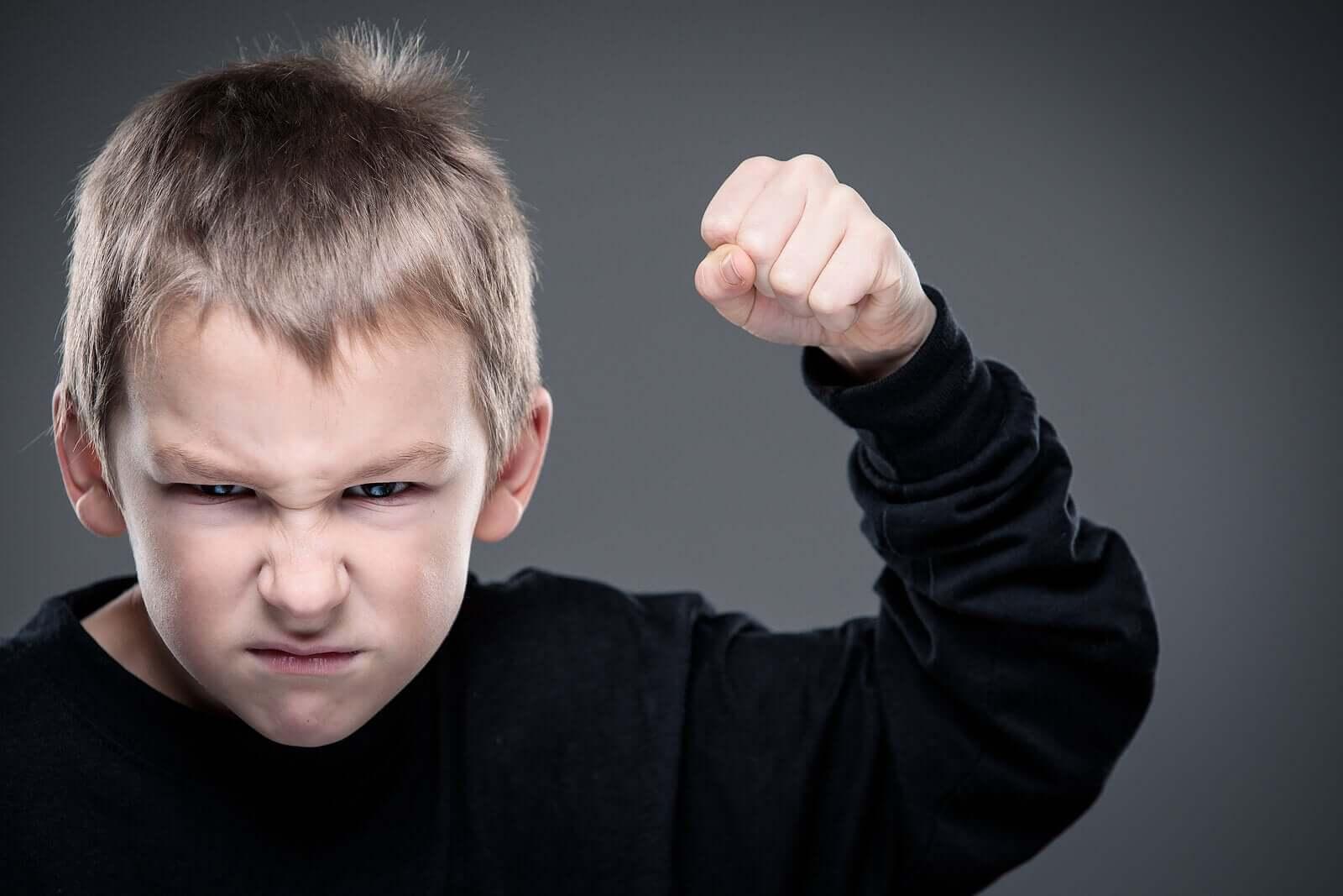 어린이의 내재화 증상과 외현화 증상