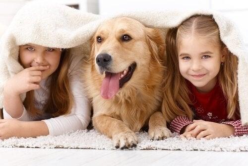 아이들이 동물을 좋아하는 이유