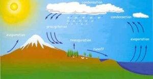 아이들에게 물의 순환을 어떻게 설명할 수 있을까?